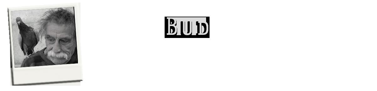 Bud_1314